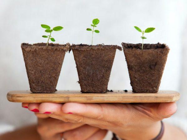 Cómo crear un plan de crecimiento que funcione de verdad